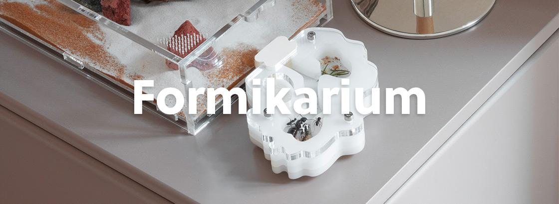 AntKeepers Formicarium till myror