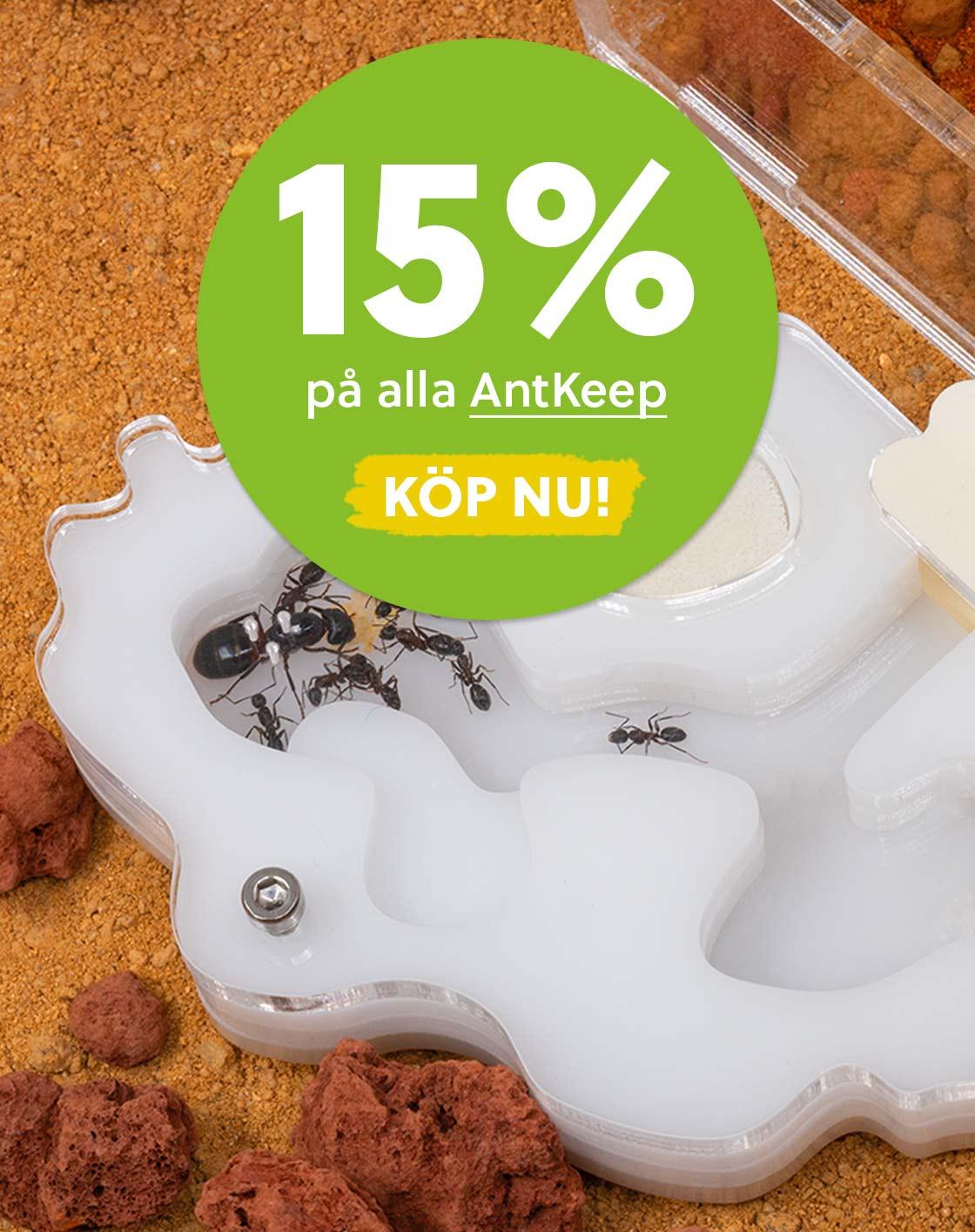 antkeepers rea 15 % antkeep