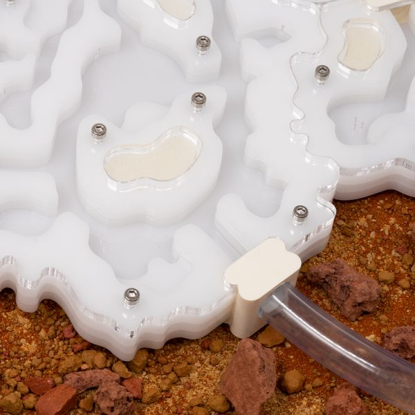 AntKeep Large Formicarium AntGate Connector