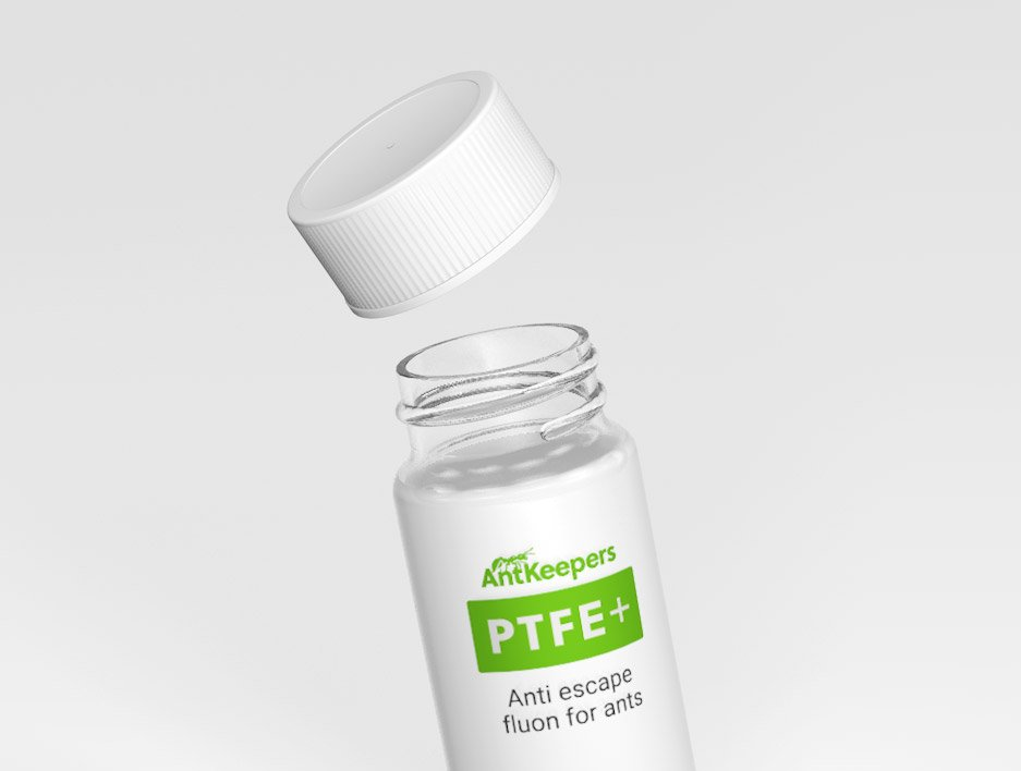 AntKeepers PTFE + flour
