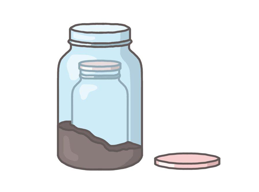 keeping ants formicarium jars