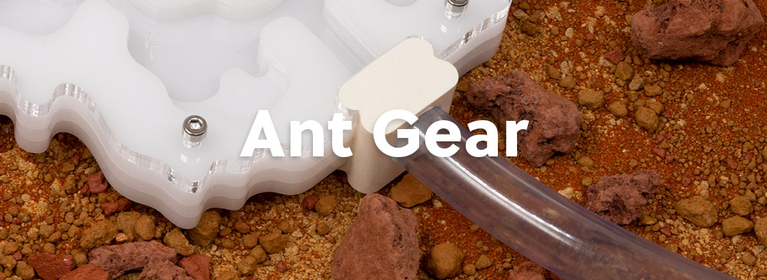 AntKeepers Ant Gear