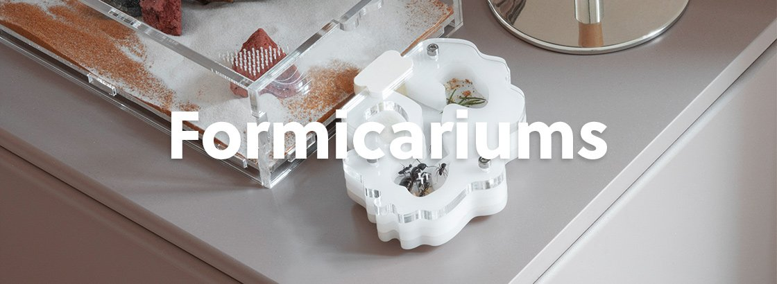 AntKeepers Formicariums for ants