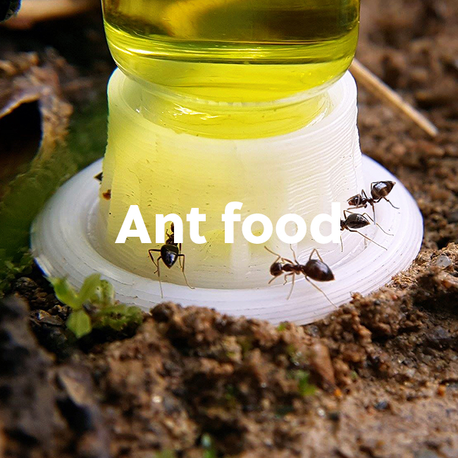AntKeepers Shop Ant Food